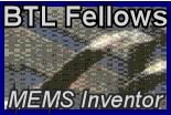 BTL Fellows Inc.