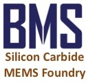 Boston MicroSystems (BMS)